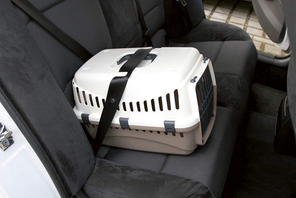 caisse transport chat pas cher